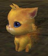 Кошка-воровка